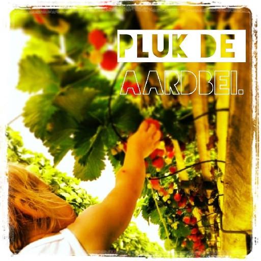 Pluk_de_aardbei
