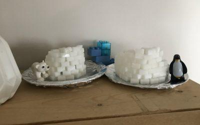 Winters knutselen: bouw samen een iglo met suikerklontjes!